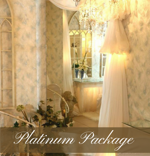 Click Here To View Our Platinum Wedding Package